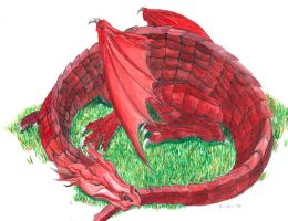 Welsh Dragon by ayato