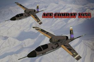 Ace Combat 1956: Gold Squad by RadPig94