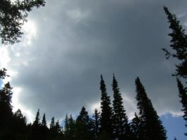Forest Surrounding Storm by abuseofstock