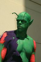 DBZ Cosplay - Piccolo 1 by TechnoRanma