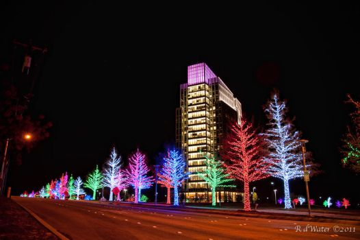 Ft Worth Christmas 2010 by RDWat