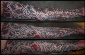 biomechanic sleeve part 2 by D3adFrog