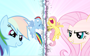 Rainbow dash and Fluttershy by camike1234