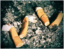 thank you for smoking by Wurstgulasch