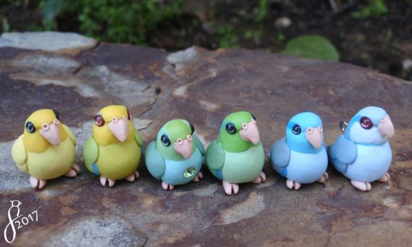 A Rainbow of Parrotlets by The-Wandering-Bird