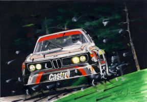 BMW 3.0 CSL by klem
