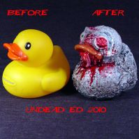 Rot Duck zombie missing eye co by Undead-Art
