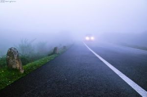 Driving in the fog. by MarioGuti