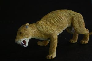 side view of lioness by assemblit