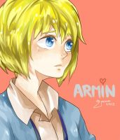 Arminkun by kingdust