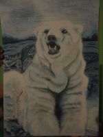 Polar Bear by Lucky101212
