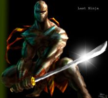 Last ninja by LordHannu