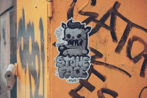 STONE FACE STICKER by The-Kiwie