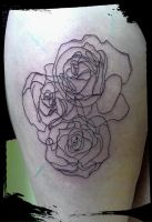 LINE ROSES by HIGHTRIP