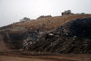 landfill by FigoTheCat