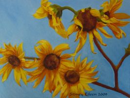 Sunflowers In Daylight by sidneyeileen