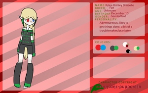 .:Rylee Driscolle Reference:. by The-Insane-Puppeteer
