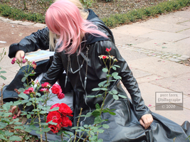Marluxia - Red Flowers by pure-faces
