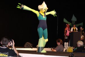 Metrocon 2015 (54) by CosplayCousins