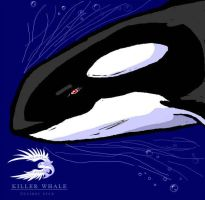 Red Eyes - Orca by spatialchaos