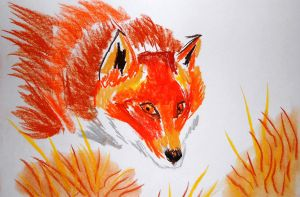 Red Fox by AlphaPsyka
