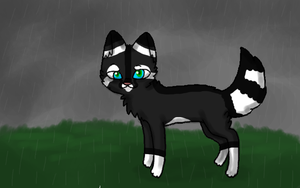 .:I Stand In The Rain:. by NeonOwlz