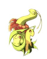 Chikorita Bayleef and Meganium by francis-john