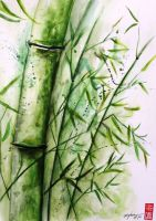 Bamboo by rchaem