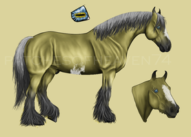 Audax-stud 1 by patchesofheaven74
