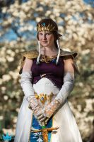 LoZ - The Princess by Eli-Cosplay