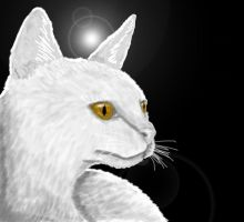 White Cat Profile by Meorow