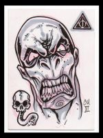 Voldemort ACEO by McMillen