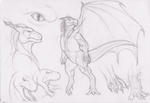 New Draconis Concept by Spacer176