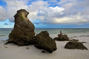 Diani Beach Rocks by batmantoo