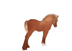 Faime Foal Opt 1 by ArsenicLaced-Estate