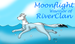 Warrior of RiverClan by Moonflight-RiverClan
