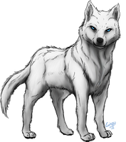 White Wolf by Gingy1380