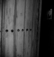 Door by EngendrARTE