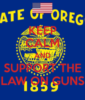 Keep Calm And Support The Law On Guns by JMK-Prime