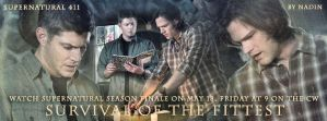 Survival of the Fittest (Banner for timeline # 1) by Nadin7Angel