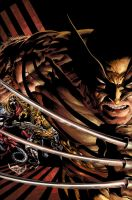 Wolverine: Origins by Summerset
