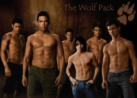 The Wolfpack Wallpaper by Mistify24