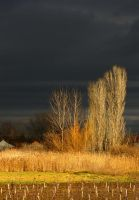 Pannonian Plain 2 by SenicaG