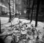 Pigeons by KevinTheremin