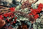 Festivity by SpencerCameron