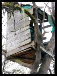 The OLD Old Treehouse by LetsAllBeNuerotic
