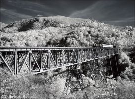 infrared photo of a train by christosR