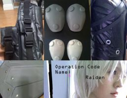 Raiden Cosplay Compilation by simplyyellow