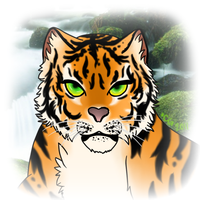 Bengal Tiger CSS by CattGregory