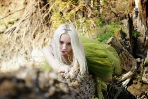 Fairy 1 by LialiaD-stock